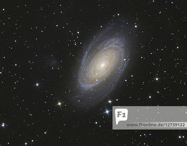 Astrophotography  Spiral galaxy Messier 81 or Bode's Galaxy