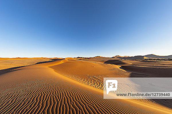 Africa  Namibia  Namib desert  Naukluft National Park  sand dunes