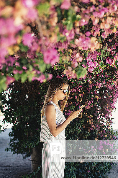 Woman using cell phone in park under pink blossoms