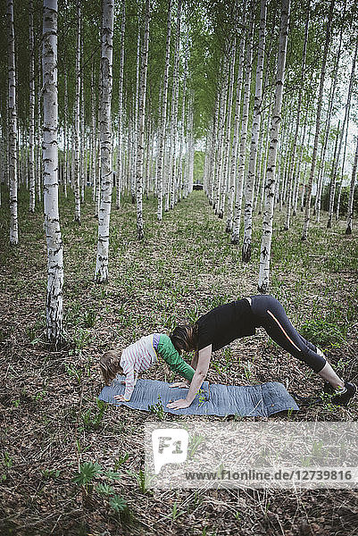 Exercise with child in forest
