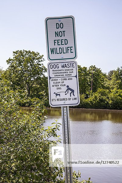 'Do Not Feed Wildlife' and 'Clean Up After Your Dog' signs by the water in a park.
