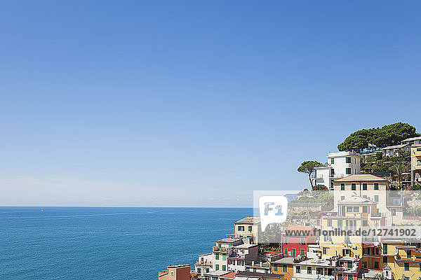Italy  Liguria  Cinque Terre  Riomaggiore  Riviera di Levante  typical houses and architecture  typical colourful houses