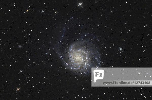 Astrophotography  Spiral galaxy Messier 101 or Pinwheel Galaxy