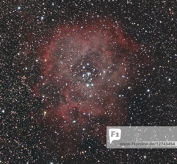 Astrophotography  Emission nebula and cluster NGC 2237 or Rosette Nebula