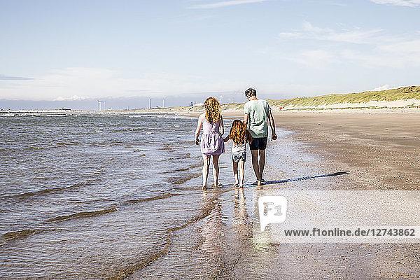 Netherlands  Zandvoort  family walking at the seashore