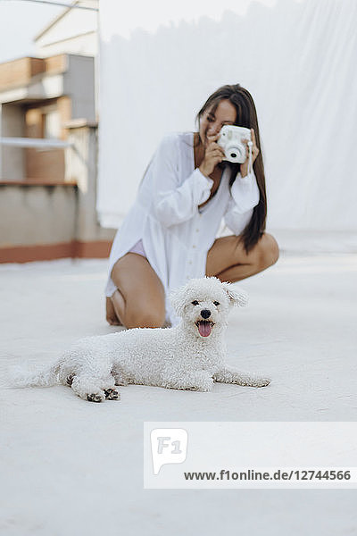 Portrait of white dog lying on roof terrace while young woman in the background taking photo