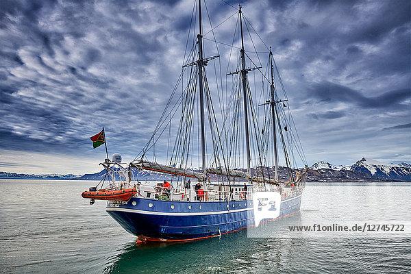Segelschiff Rembrandt van Rijn , Ny-Ålesund, Spitzbergen, Norwegen, Europa