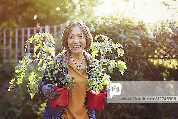 Aktiver Senior,anpflanzen,Ansicht,Arbeitshandschuh,Asiate,Außenaufnahme
