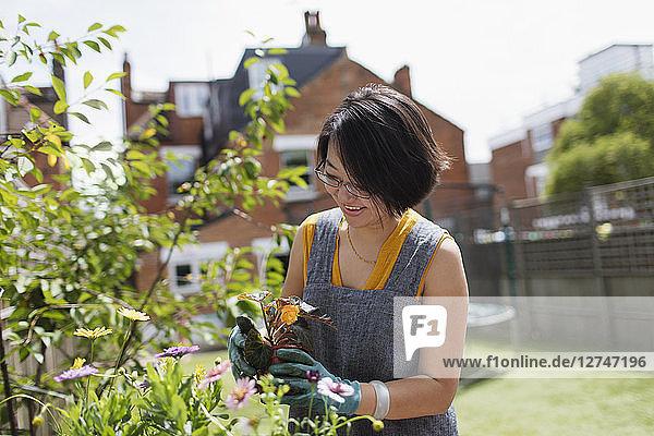 Woman gardening in sunny yard