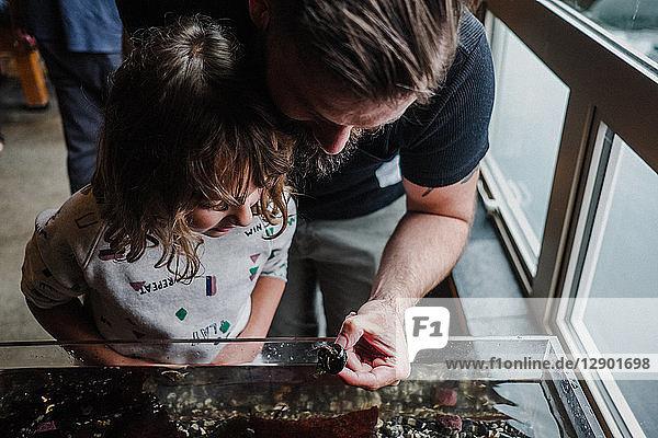 Vater und Tochter entdecken das Meeresleben im Aquarium
