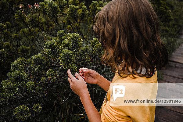 Mädchen entdeckt die Natur