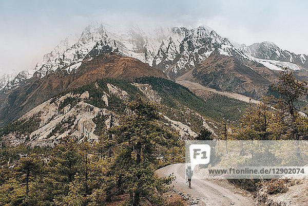 Hiker on trail  Annapurna Circuit  the Himalayas  Manang  Nepal