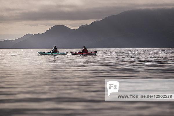 Friends kayaking in lake  Johnstone Strait  Telegraph Cove  Canada