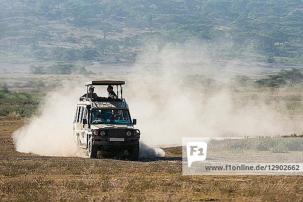 Ein Safari-Fahrzeug im Ndutu-Gebiet  Ndutu  Ngorongoro-Schutzgebiet  Serengeti  Tansania