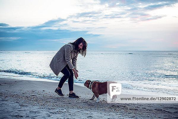 Junge Frau spielt mit Haushund am Strand