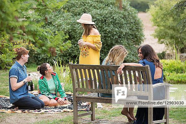 Freunde genießen Picknick auf dem Land Freunde genießen Picknick auf dem Land