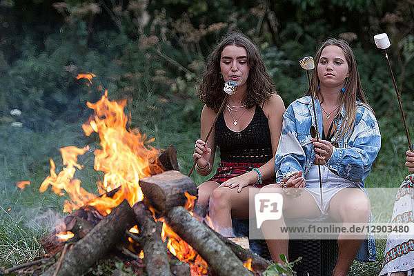 Freunde toasten Marshmallows bei Lagerfeuer-Party im Park