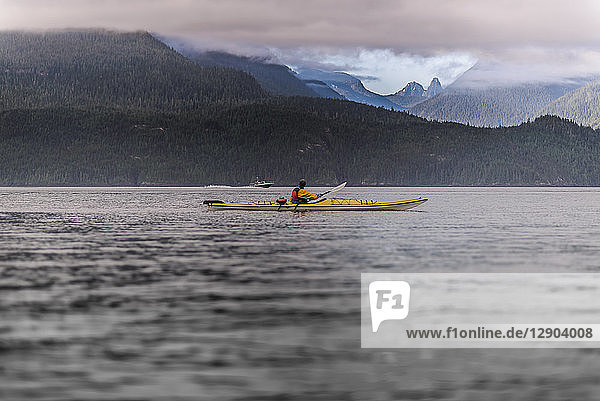 Kajak fahrender Mann im See  Johnstone Strait  Telegraph Cove  Kanada