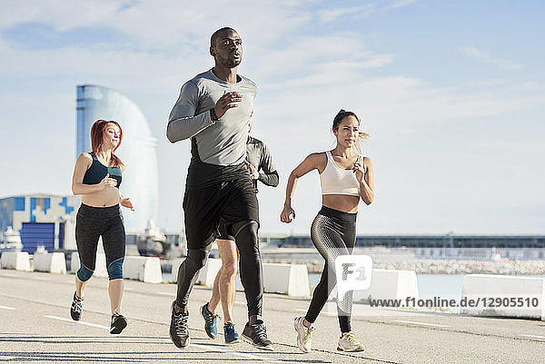 Group of sportspeople jogging at harbour
