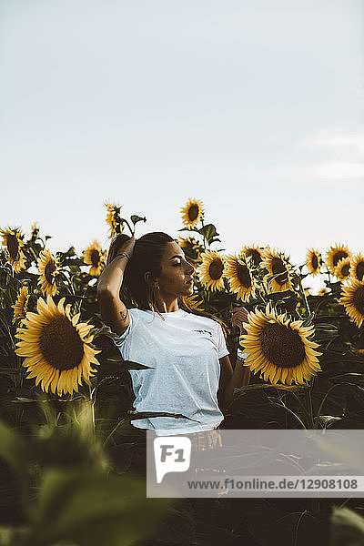 Portrait of a young woman standing in a field of sunflowers,  hand in hair