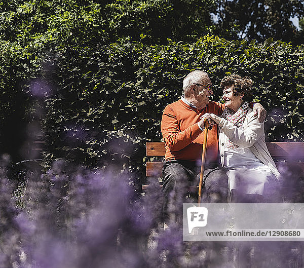 Senior couple sitting on bench in a park  falling in love