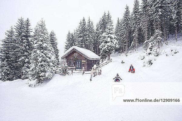 Austria  Altenmarkt-Zauchensee  family tobogganing at wooden house at Christmas time