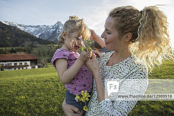 Austria  Tyrol  Walchsee  mother carrying daughter with flowers on an alpine meadow