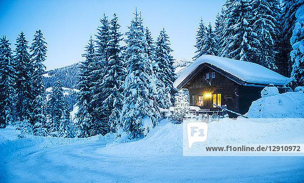 Austria  Altenmarkt-Zauchensee  sledges  snowman and Christmas tree at illuminated wooden house in snow at dusk