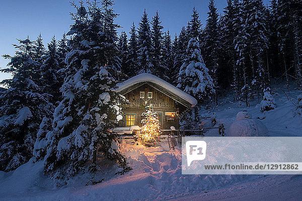 Austria  Altenmarkt-Zauchensee  sledges  snowman and Christmas tree at illuminated wooden house in snow at night