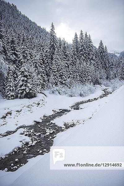 Austria  Salzburg State  Altenmarkt-Zauchensee  snowy landscape