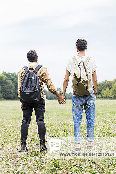Back view of young gay couple with backpacks standing hand in hand on a meadow