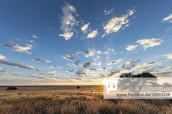 Africa  Botswana  Kgalagadi Transfrontier Park  Mabuasehube Game Reserve  Mabuasehube Pan at sunrise