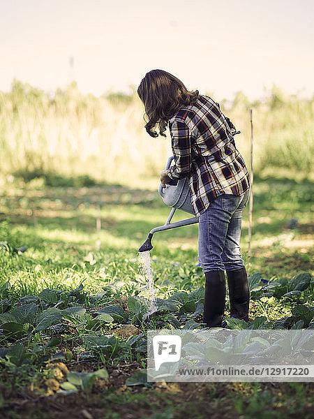 Woman watering plants on a field
