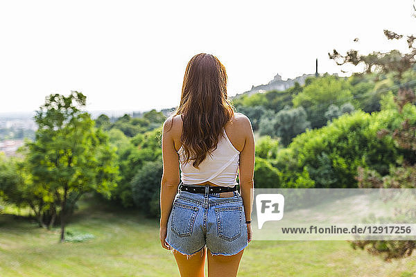 Back view of redheaded woman standing on hill in a park looking at view