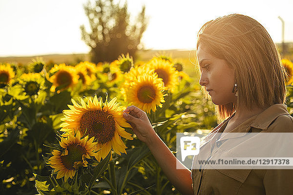 Portrait of a young woman in a sunflower field