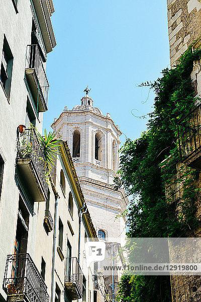 Girona Cathedral (Cathedral of Saint Mary of Girona)  a Roman Catholic church  Girona  Catalonia  Spain  Europe