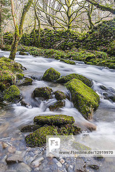 River in the foothills of Cnicht  Croesor Valley  Snowdonia National Park  Gwynedd  North Wales  Wales  United Kingdom  Europe