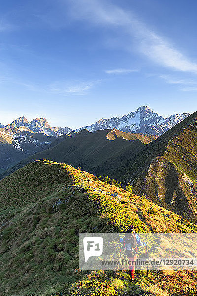 Hiker walks on the ridge of Mount Rolla with Mount Disgrazia in the background  Valtellina  Lombardy  Italy  Europe
