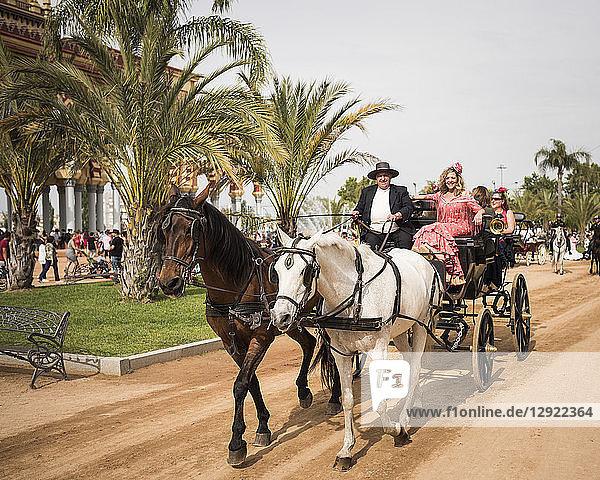 Feira de Cordoba  Cordoba  Andalucia  Spain  Europe