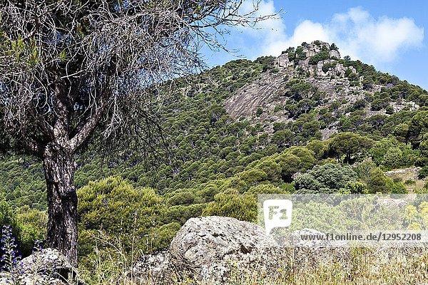 Castrejon hill in Cebreros. Avila. Spain