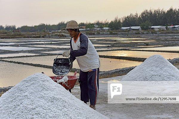Salt fields at Karangjahe  near Lasem  Java island  Indonesia  Southeast Asia.