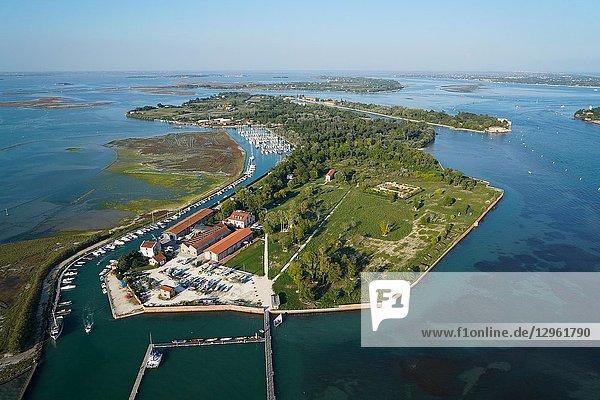 Aerial view of Certosa island  Venice Lagoon  Italy  Europe.