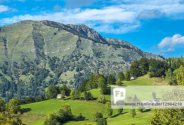 France  Pyrenees National Park  Occitanie region  Val d'Azun  Ouzoum valley near Arbeost  barns