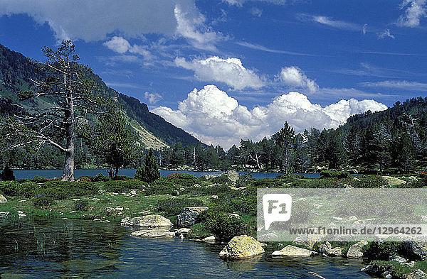 France  Pyrenees National Park  Neouvieille nature reserve  vallee d'Aure  lac d'Aumar