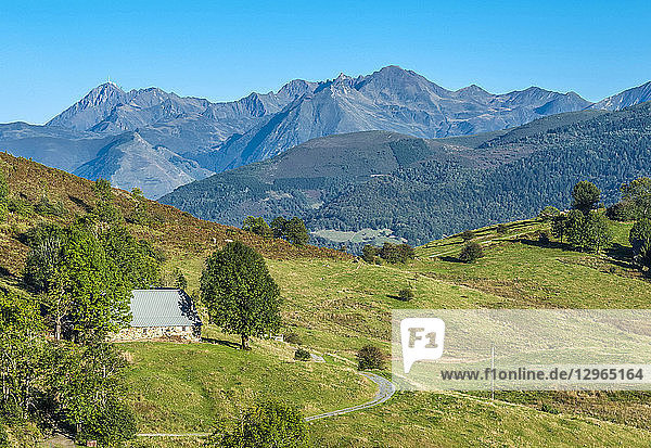 France  Pyrenees National Park  Occitanie region  Val d'Azun  road of the col de Couraduque (mountain pass)  mountain pasture meadows  Pan ridge and Pic d'Arrouy in the background (1 522 meters)