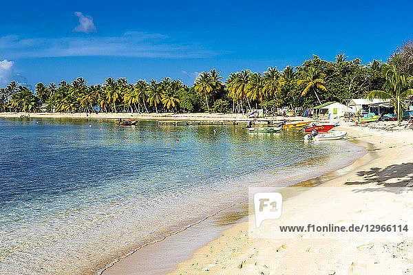 Salt Whistle Bay's beach  one of the most beautifull of all Lesser Antilles  Mayreau  Saint-Vincent and the Grenadines  West Indies