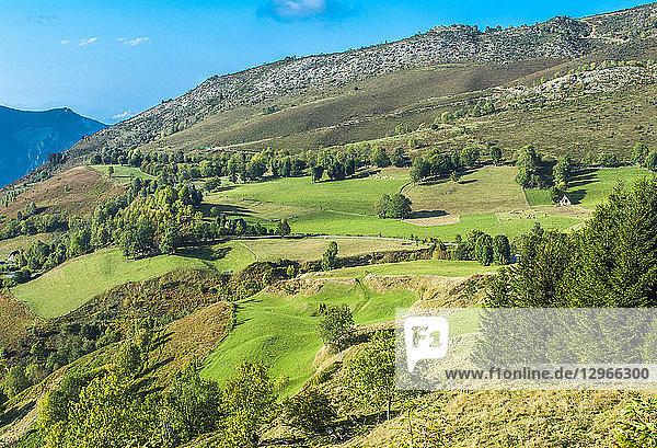France  Pyrenees National Park  Vallee d'Argeles-Gazost  up at Hautacam station  mountain pasture landscape