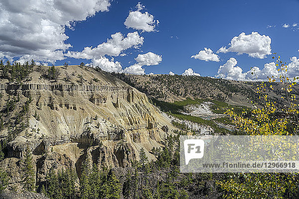 USA  Wyoming  Yellowstone National Park  UNESCO World Heritage List