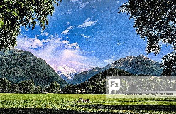 Life in Switzerland beautiful Swiss alps scenic Jungfran in Interlaken Switzerland
