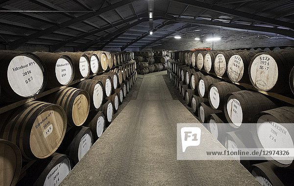 Scotch whisky barrels in warehouse at Edradour Distillery in Pitlochry  Scotland  United Kingdom.